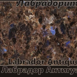 Labrador Antique / Лабрадор Антигуа